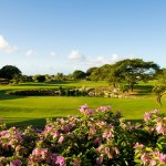 Play a round at Barbados Golf Club
