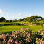 Play a round at Barbados Golf Club