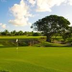 Tropical greens await!