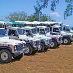 Our rainbow coloured convoy