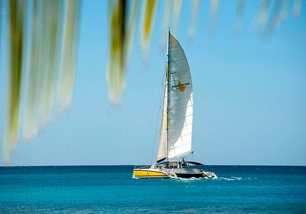 Tiami Catamaran Cruises